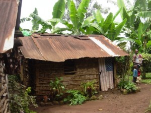 House 19